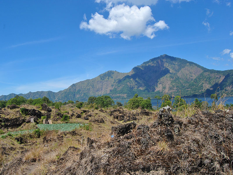 Bali Bagus Tour - Kintamani Volcano