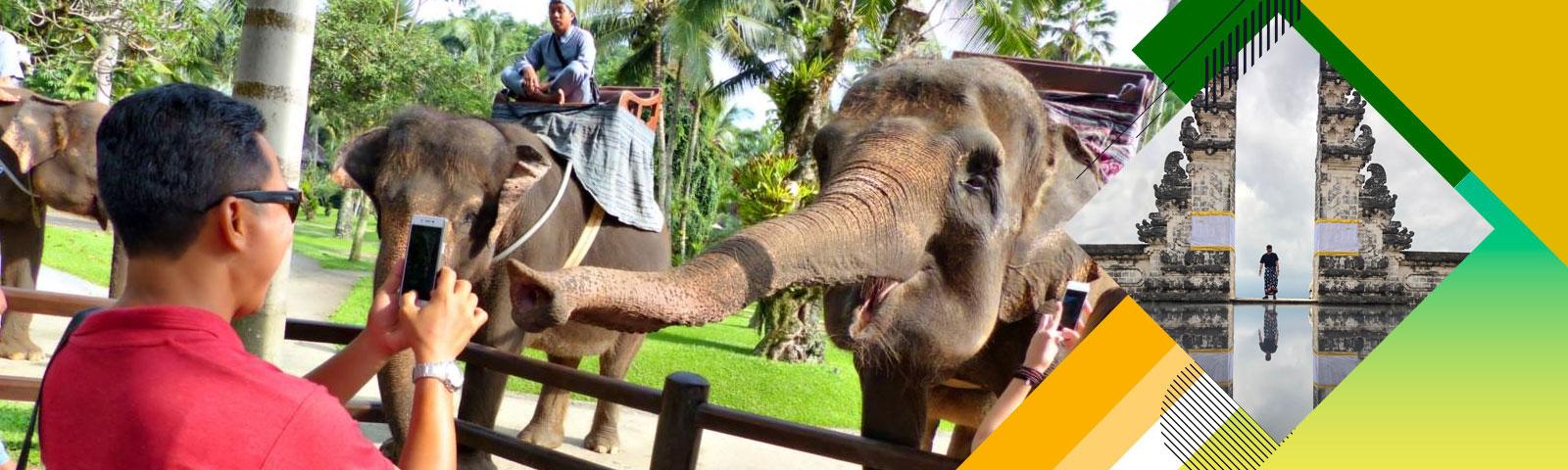 Booking Bali Bagus Tours